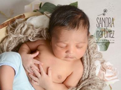 sesion fotografica newborn