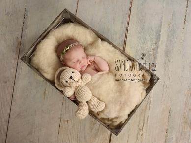 newborn ripollet barcelona