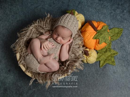 newborn Noah