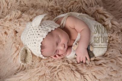 sesion fotografica-newborn-barcelona-ripolletDSC_5706